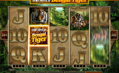 slot machine italia untamed bengal tiger